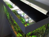 Aquarium Led Beleuchtung Selber Bauen Schullebernds Technikwelt with regard to measurements 1024 X 1365